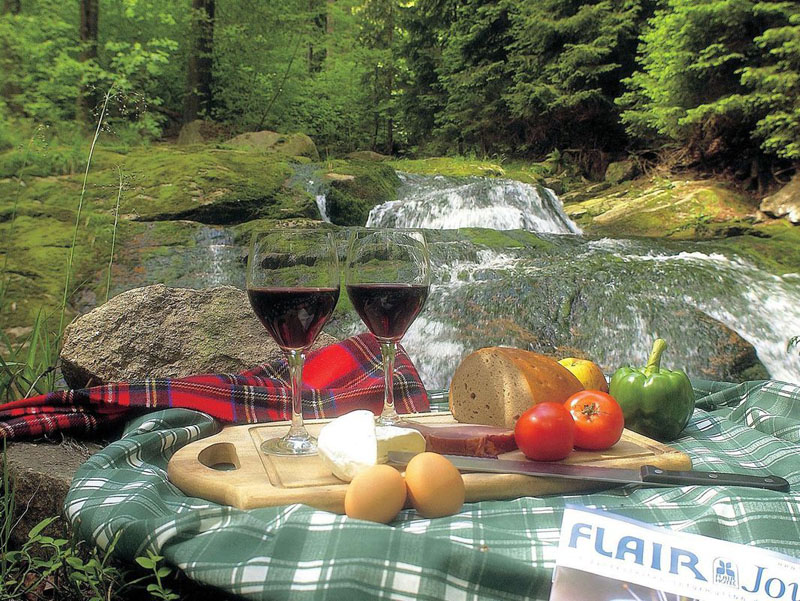 Flair-Picknick