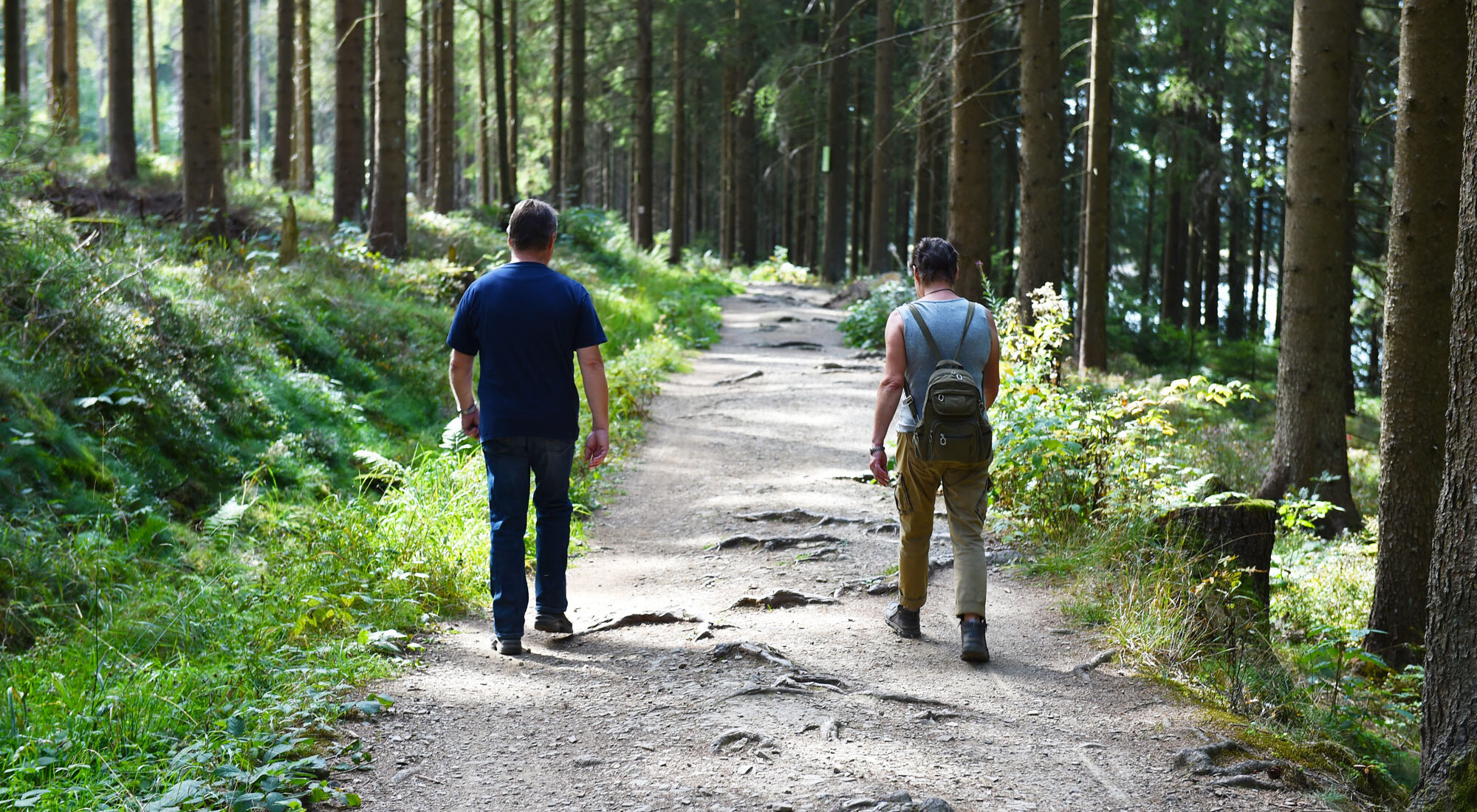 Wandern um Ilsenburg