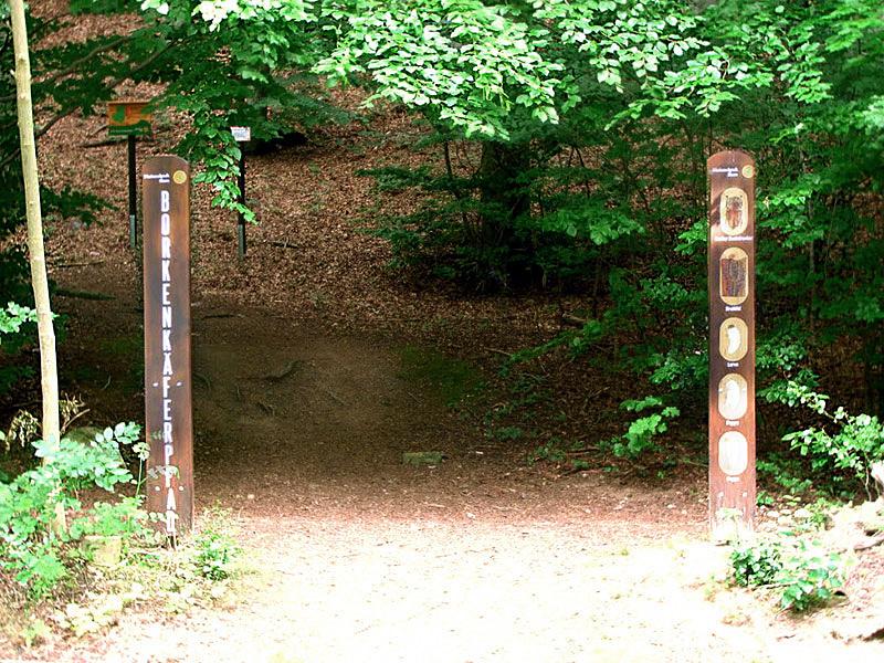 Borkenkäferpfad Eingang